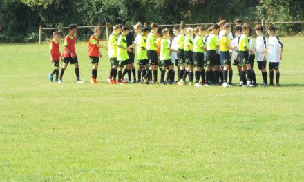 DAFC U14s 3-0
